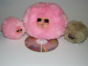 pygmy puff comparison